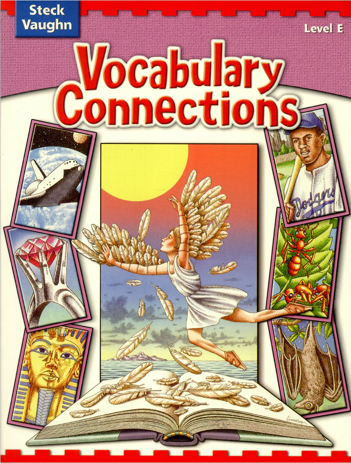Vocabulary Connections - Level E