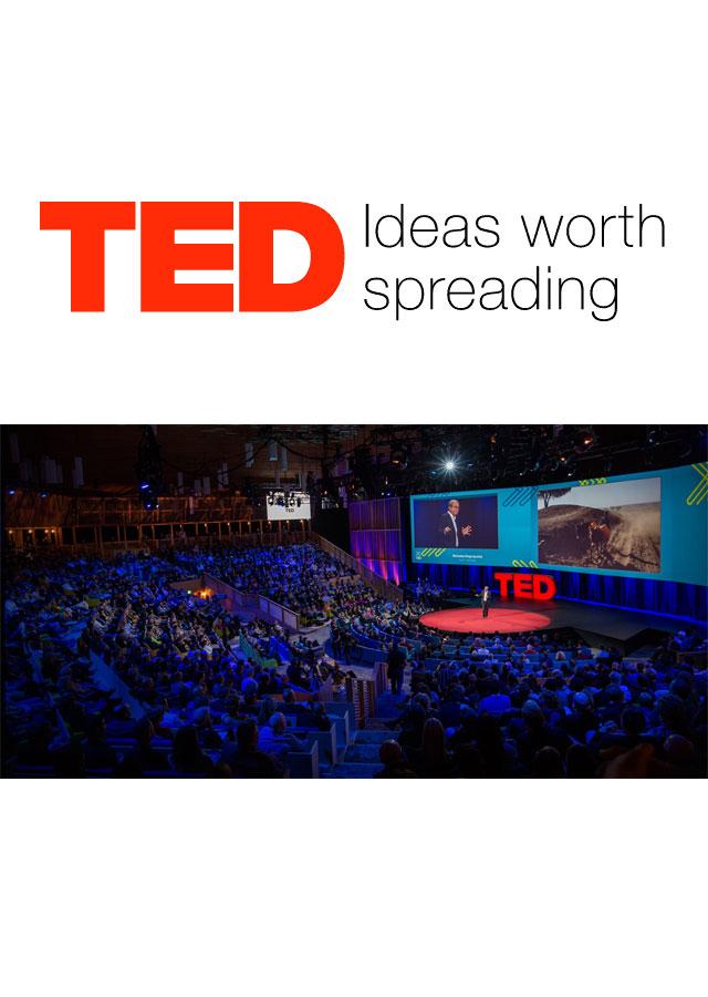 Ted English