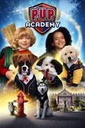 Puppy academy (퍼피 아카데미)
